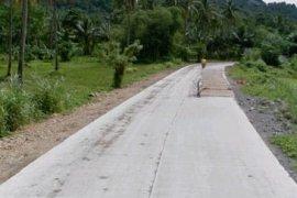 Land for sale in Masgad, Surigao del Norte near LRT-1 5th Avenue