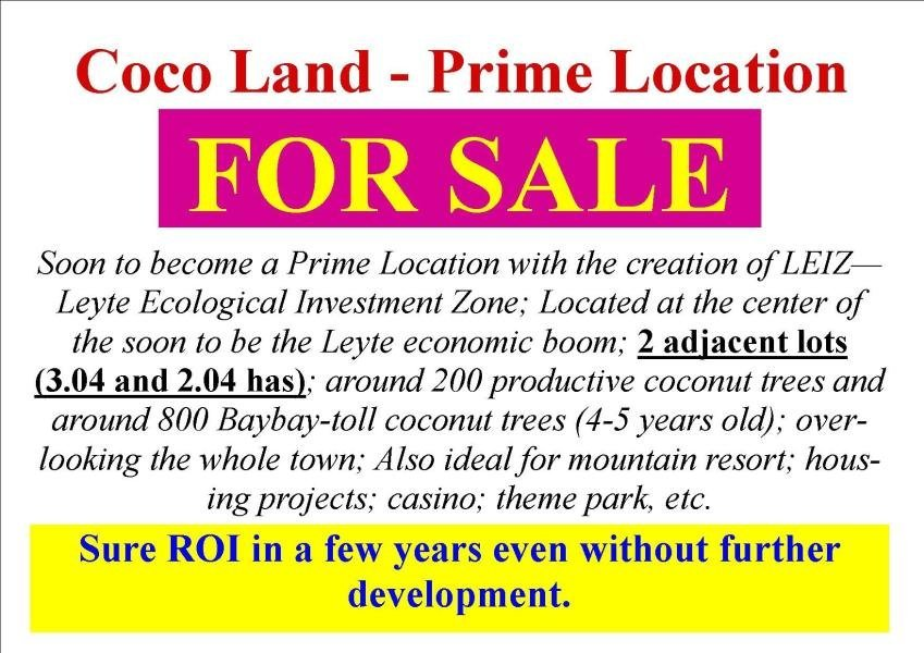 rush - 3 hectare cocoland for sale - 1.75m only