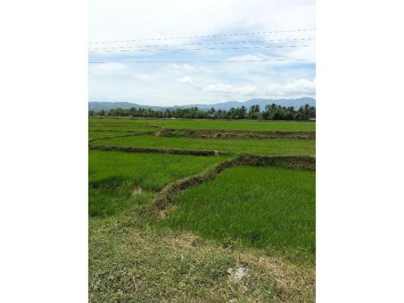 agricultural land for sale in oriental