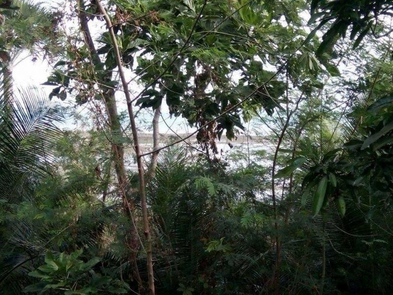 3000 sqm guimaras property over view facing