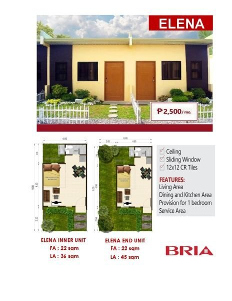 elena unit house and lot for sale