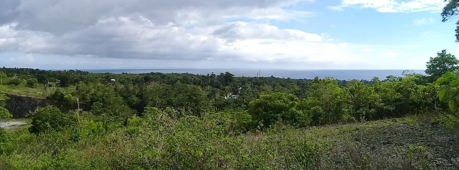 8848 sqm overlooking in canasagan, san juan