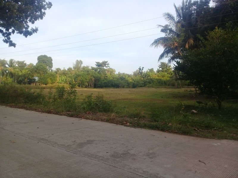 4200 sqm lot in paliton, san juan