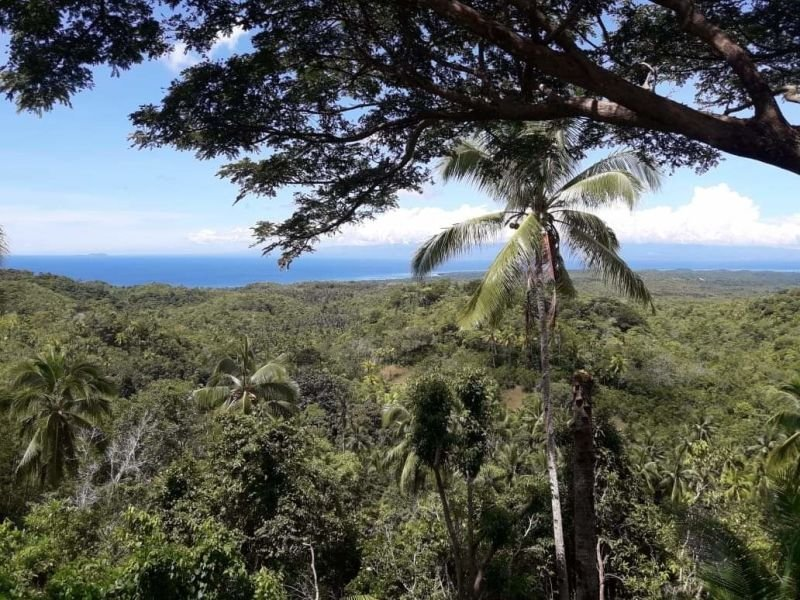 10 000 sqm overlooking, sunset view, san juan