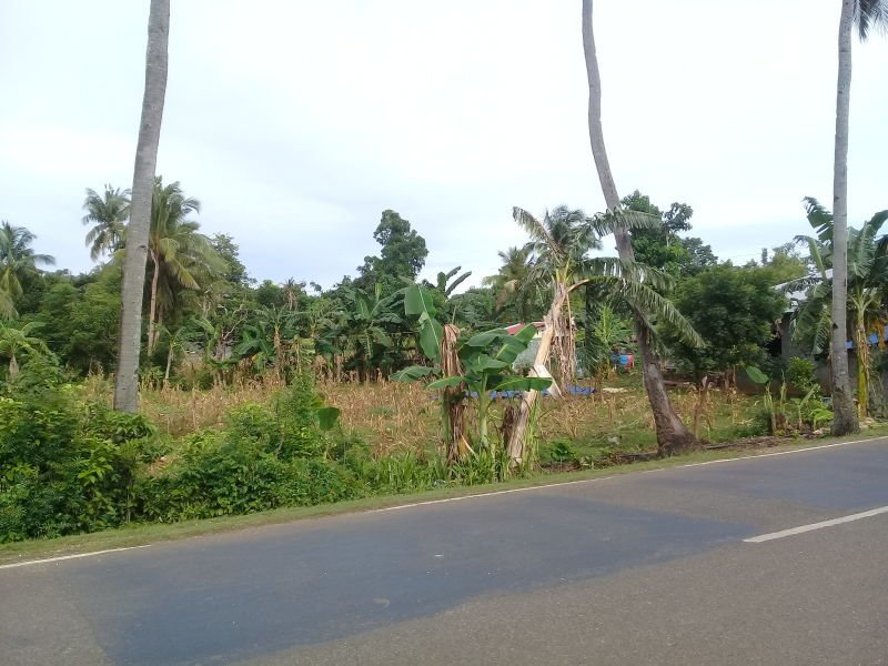 1400 sqm highway front 2 minutes from paliton beach