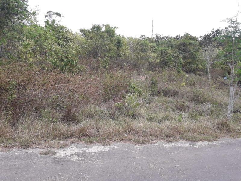 7700 sqm in poblacion, san juan 550 per sqm
