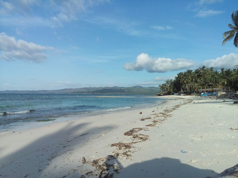 1349 sqm white sand beach candanay sur siquijor