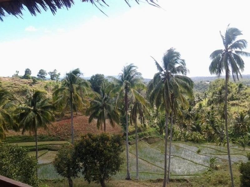 overlooking lot for sale in siquijor