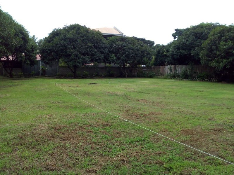 subdivided lots for sale in bacong