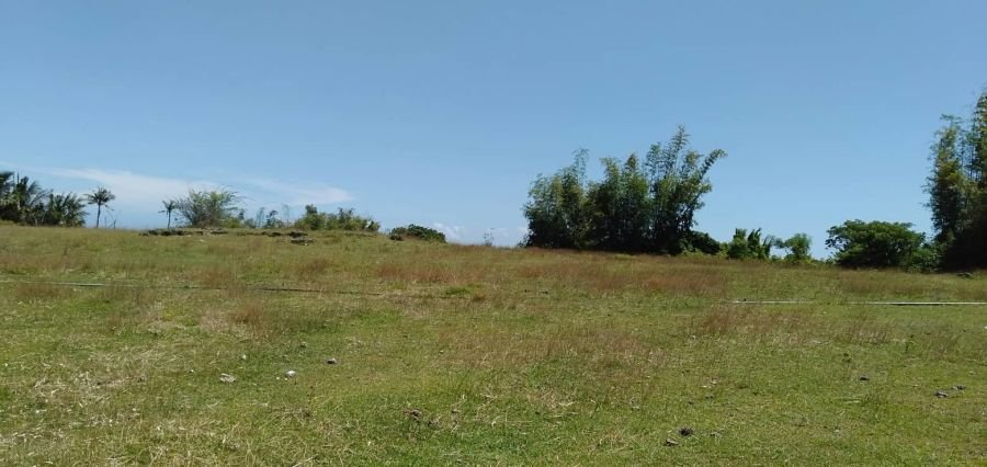 ocean view lot for sale