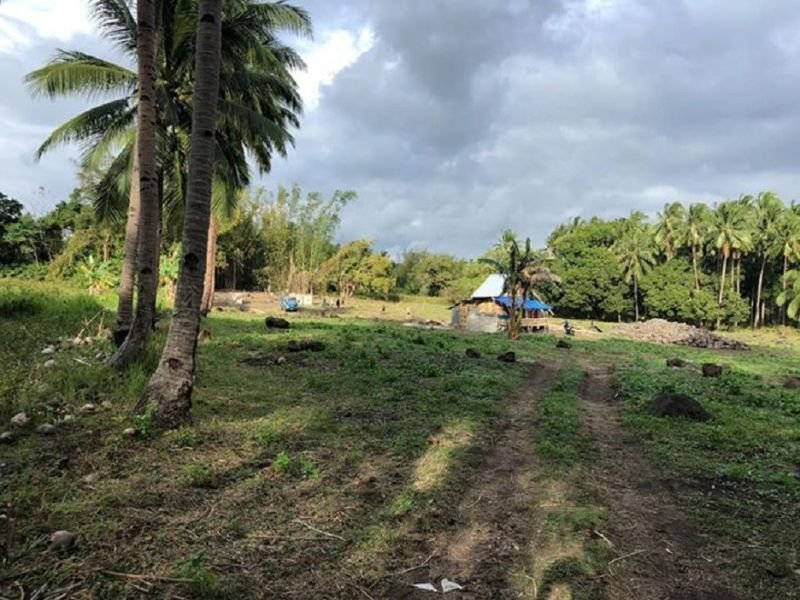 low cost residential lots for sale in dauin