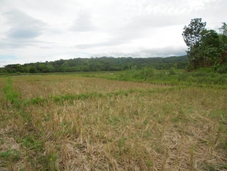 land for sale in occidental mindoro