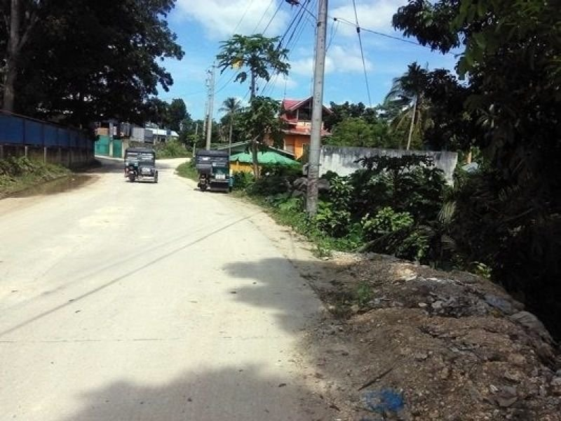 land for sale in bohol near lrt-2 recto