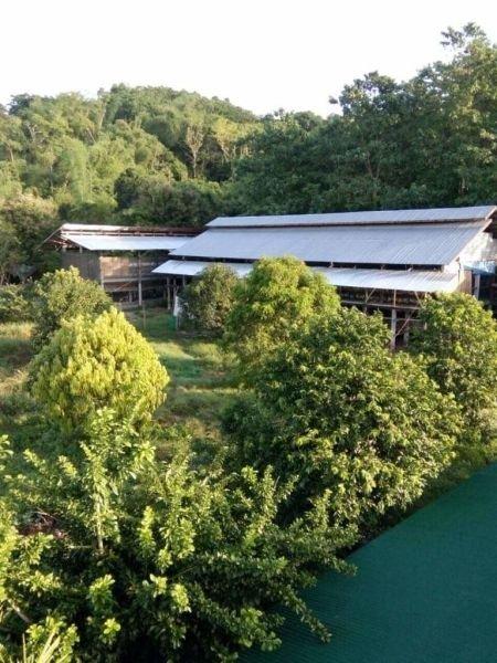 farm for sale - 4168568