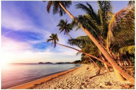 Commercial for sale in New Busuanga, Palawan