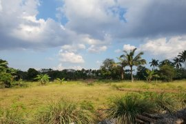 Land for sale in Kaong, Cavite