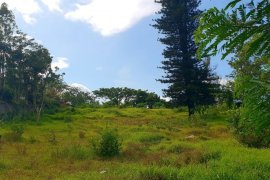 Land for sale in Bilog, Cavite
