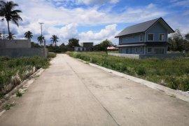 Land for sale in Mendez (Mendez-Nuñez), Cavite