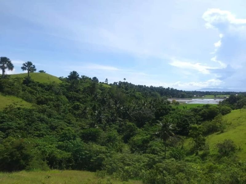 lot for sale in bongabong, oriental mindoro, philippines