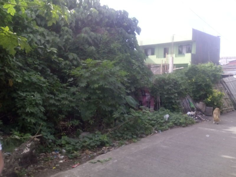 commercial residential lot in aglipay street, roxas city