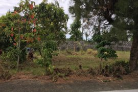 Land for sale in Amuyong, Cavite