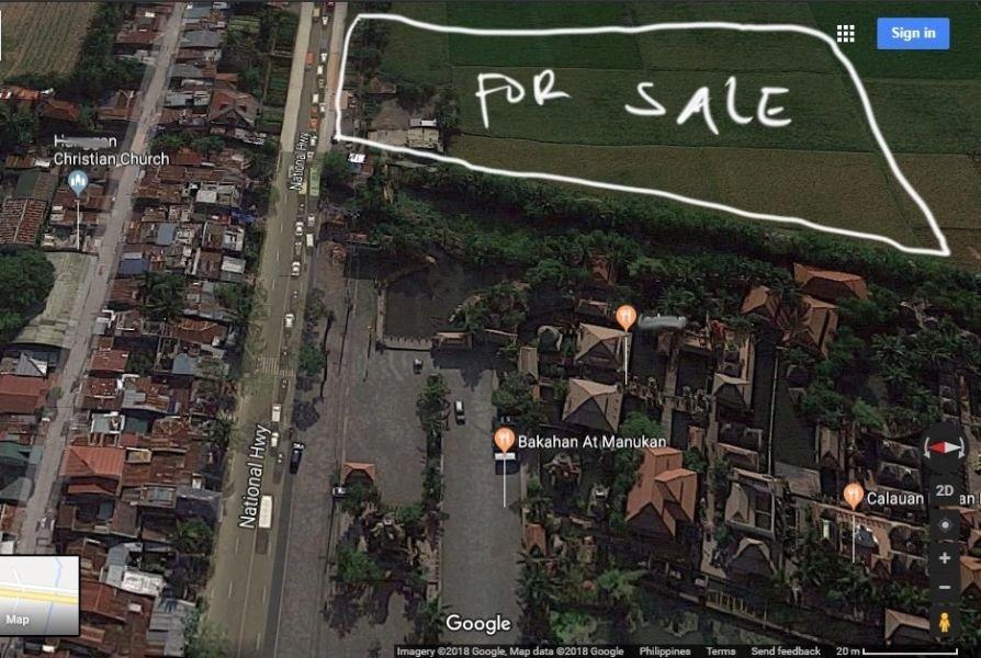 farm lot for sale- 4.6has-along national highway- calauan laguna