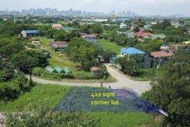Land for sale in Pinagsama, Metro Manila