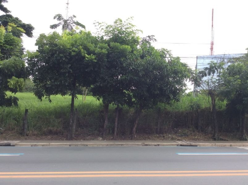 1,000 sqm lot along sumulong h-way, antipolo