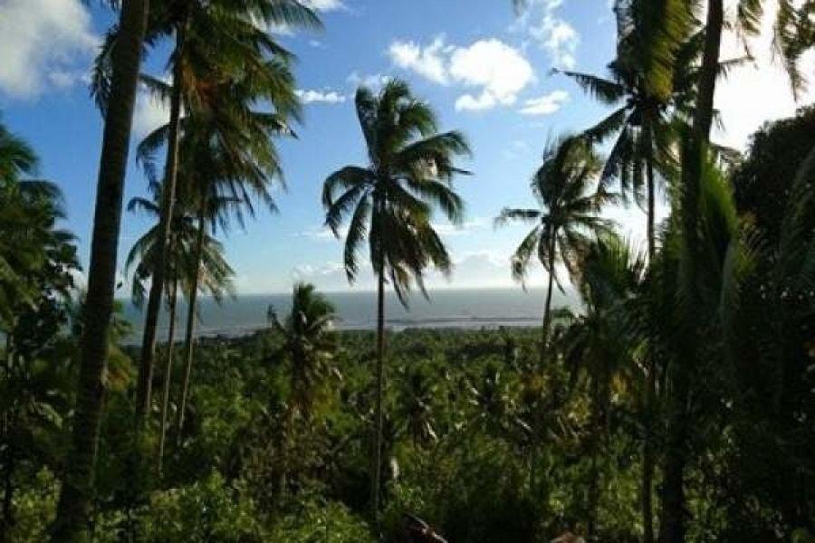 5.80 hectares overlooking lot for sale n buenavista guimaras