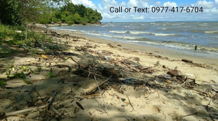 free-cut beach for sale in buenavista guimaras