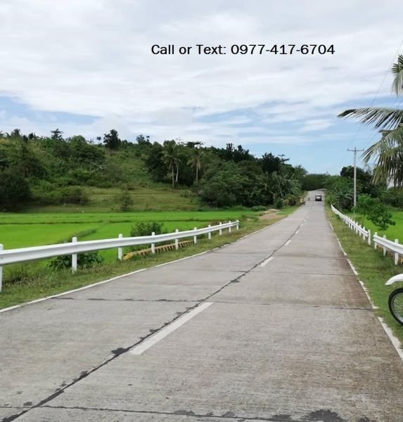 1 hectare overlooking along national highway