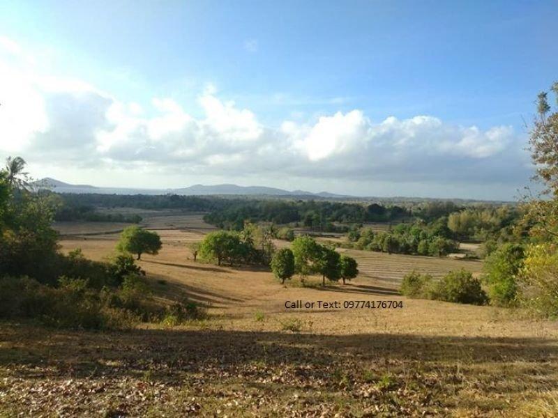 14 hectares overlooking along barangay in guimaras for sale