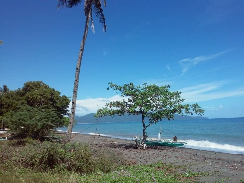 beachfront farm land with 50 meters of beach