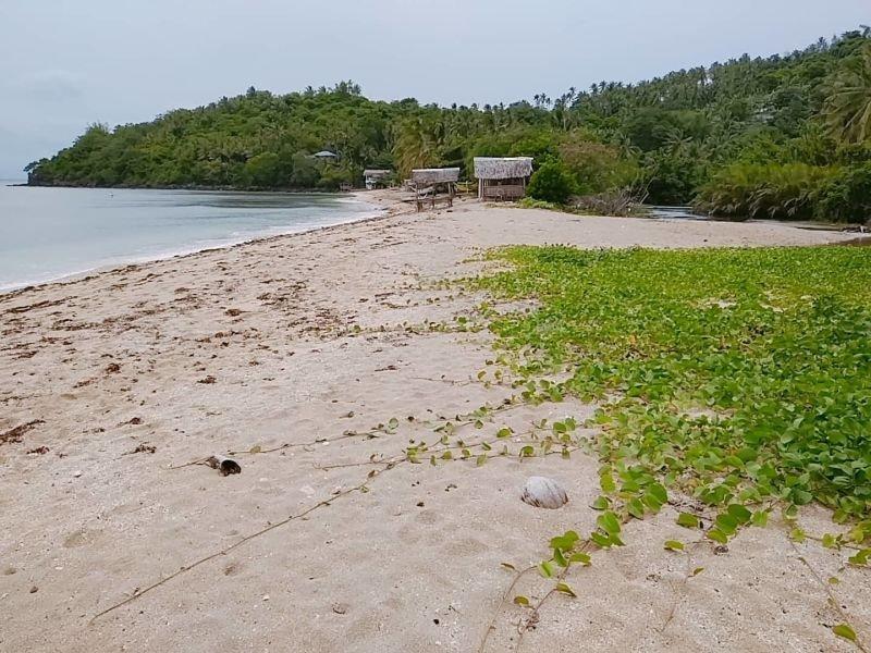 white sand beachfront lot near the city