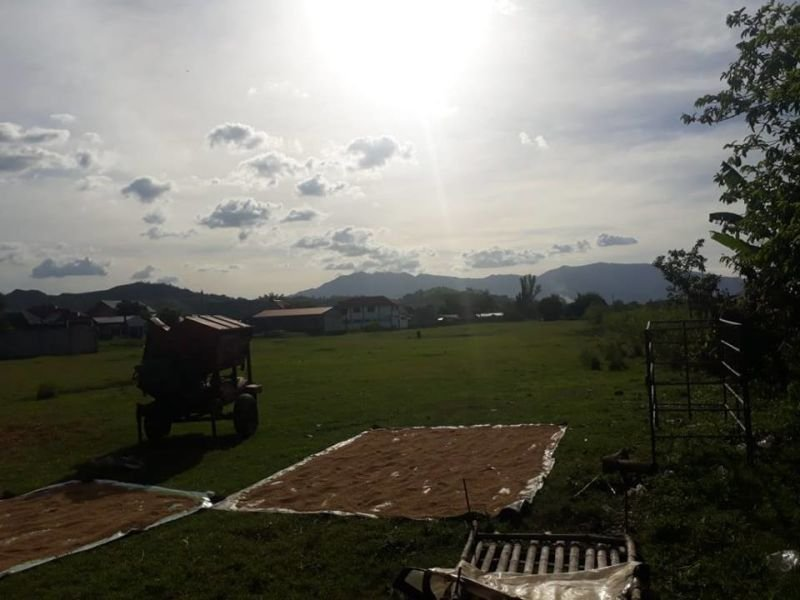 lot for sale in subic along the highway