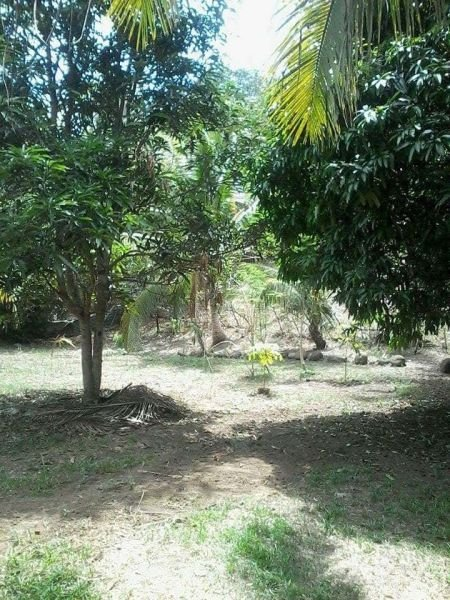 9,600 sq mtr land for sale in iligan city