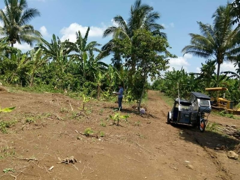 selling farm lot in amadeo cavite