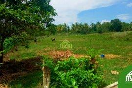 Land for sale in Argawanon, Cebu