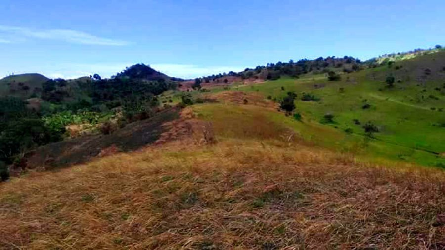 agricultural pastural land for sale