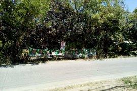 Land for sale in Majada Labas, Laguna