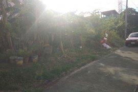 Land for sale in Parian, Laguna