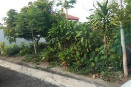 Land for sale in Bucal, Laguna