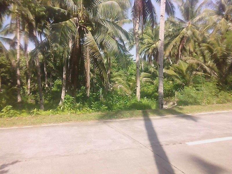 along the wi-way farm land