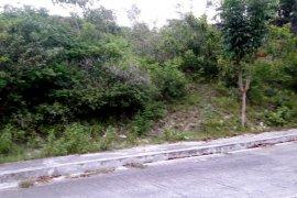 Land for sale in Sacsac, Cebu
