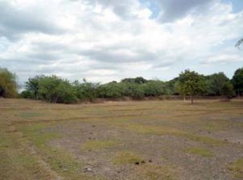, malasiqui, pangasinan lot for sale 2.5hectares lot for s