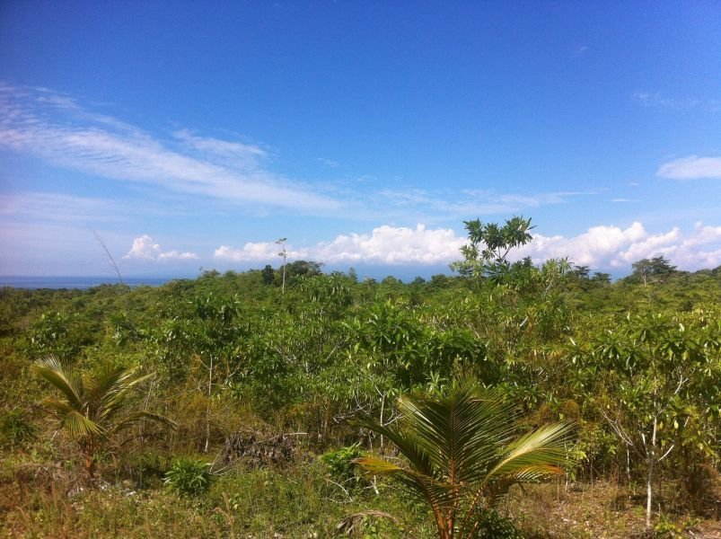 affordable overlooking lot west facing with great views near san juan, siquijor