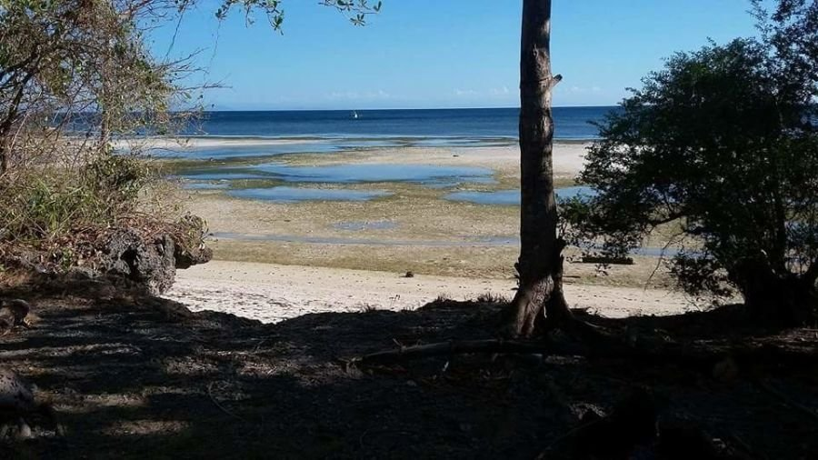 beach lot for sale in candanay siquijor