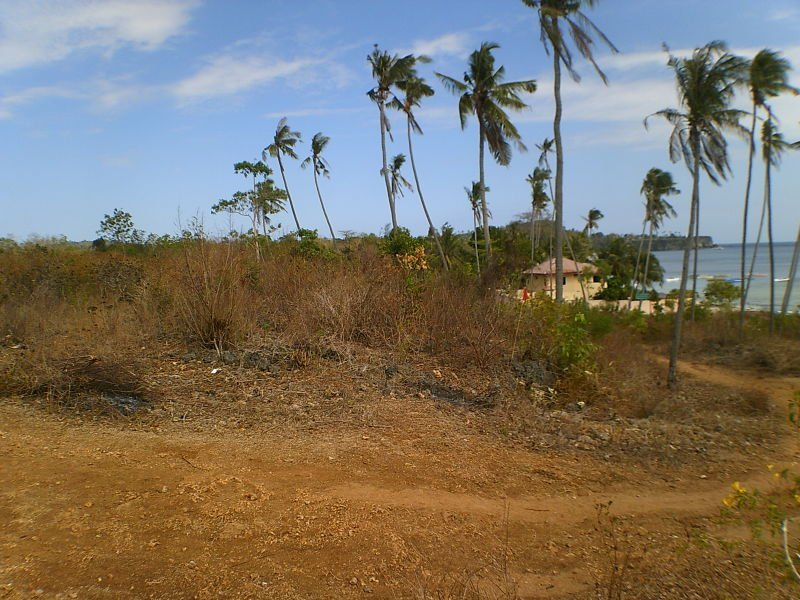 land for sale in san juan, siquijor