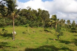 Land for sale in Upli, Cavite