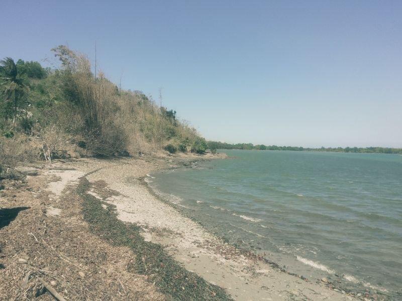 5.5 hectares beach lot for sale in san isidro, sibunag, guimaras